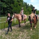 Den s koňmi